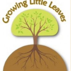 Growing%20Little%20Leaves%20blog