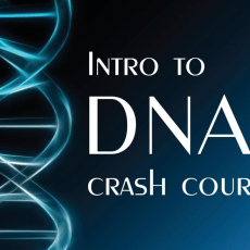 Blaine Bettinger Intro to DNA Crash Course free download book